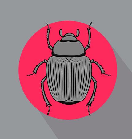 crawly: Beetle Bug Vector