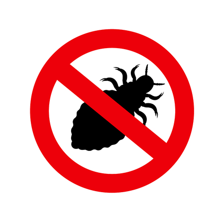 lice: Forbidden Lice Insect Illustration