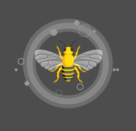 crawling creature: Poisonous Bee Vector Illustration