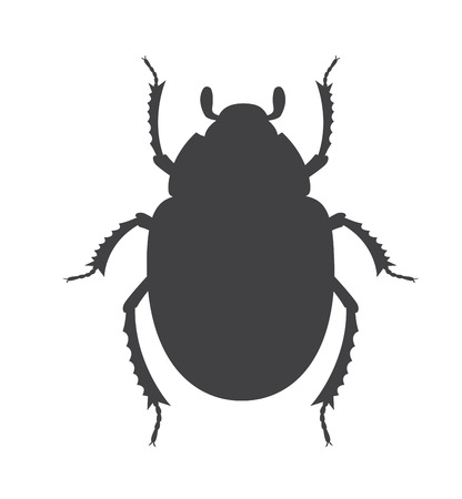 scarab: Scarab Beetle Insect Vector Silhouette