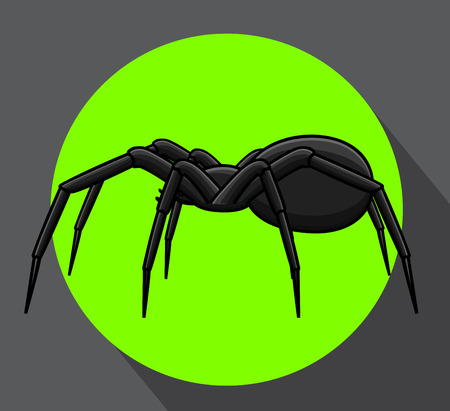 Horrible Spider