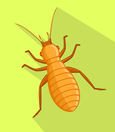 maggot: Louse Vector Insect Illustration