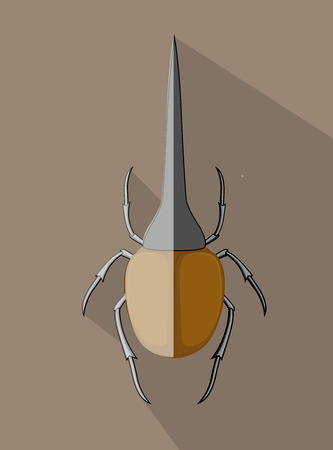 Wild Hercules Beetle Insect Illustration