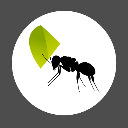 crawly: Ant Carrying a Leaf Element