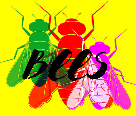 Colorful Flies Background