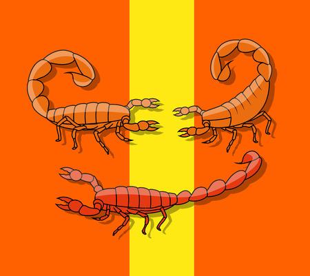 poisonous: Poisonous Scorpions