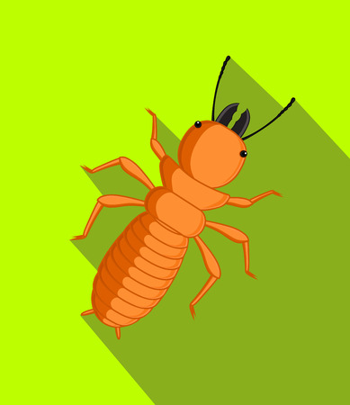 Termite Insect Vector Illustration