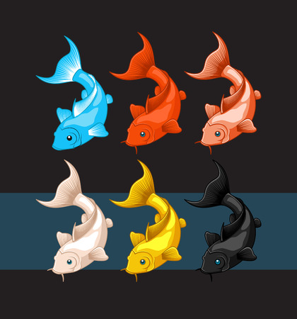fishes: Colorful Koi Fishes