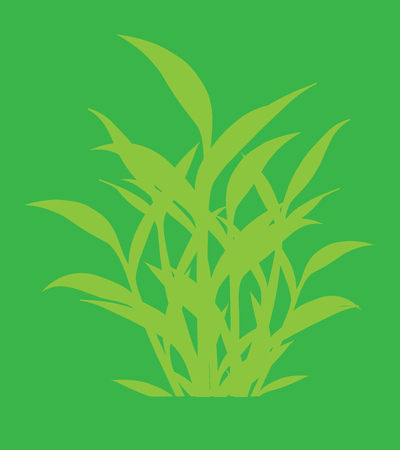 traditional chinese medicine: Organic Green Leaves Shapes Background