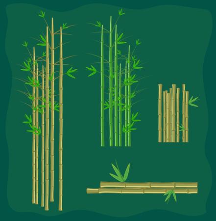 Bamboo Sticks Collection