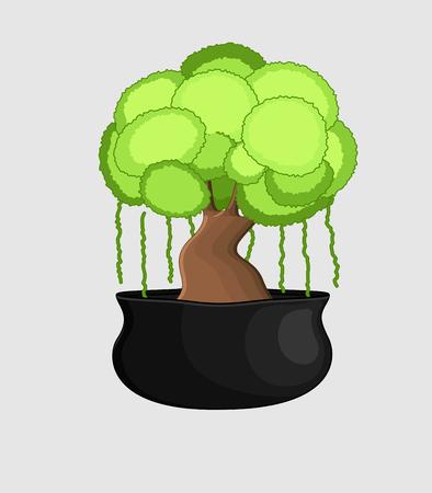 bonsai: Bonsai Tree in Vase Illustration