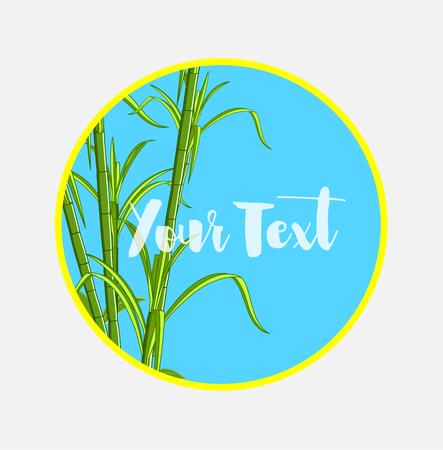 sugarcane: Sugarcanes Vector Banner