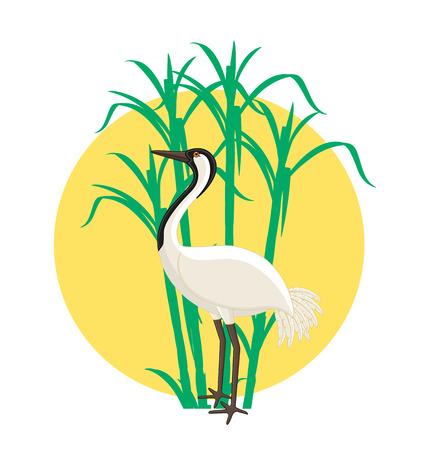 crane bird: Crane Bird in Field Illustration