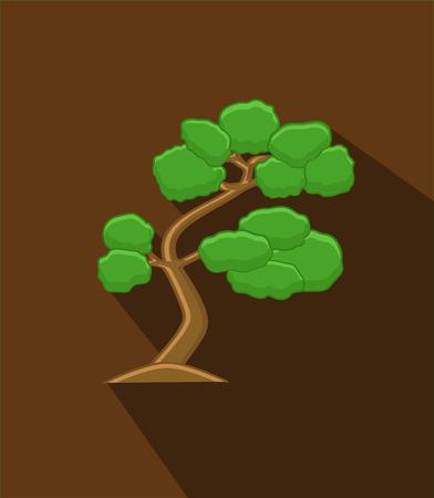 bonsai: Green Bonsai Tree