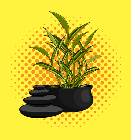 zen stones: Small Bamboo Pot with Zen Stones