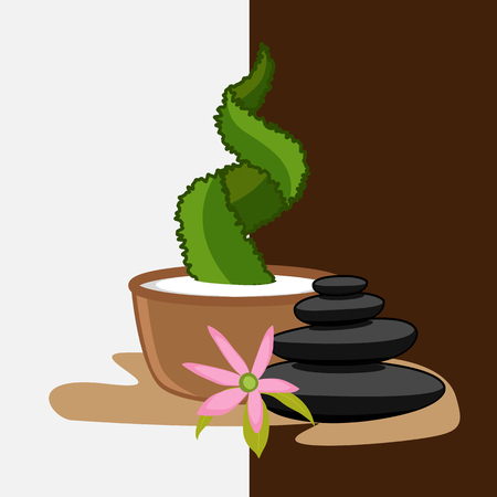 Zen Stones with Flower and Cactus Plant Illustration