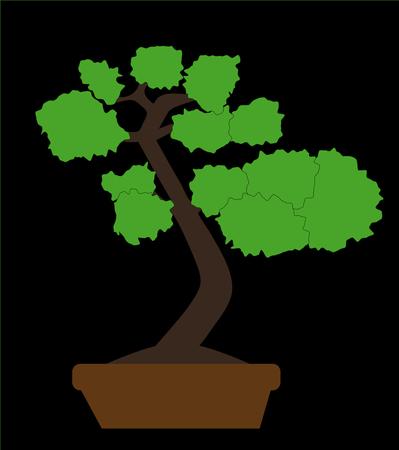 plant pot: Bonsai Plant with Pot Vector