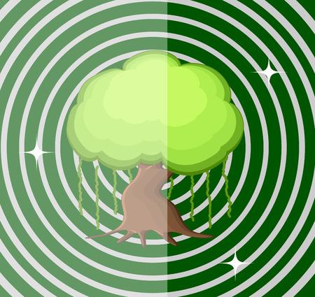 asian gardening: Bonsai Tree Vector