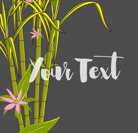 Flowers Blooming on Sugarcane