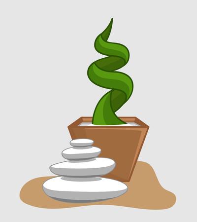 zen stones: White Zen Stones with Cactus Plant