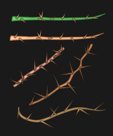 Espinas del árbol Vectores