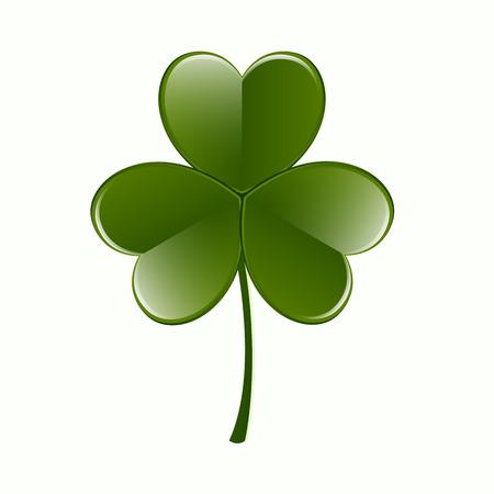 threeleaf: Shamrock Leaf Vector Icon