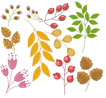 twigs: Leaves Branches and Twigs Vector Set Illustration