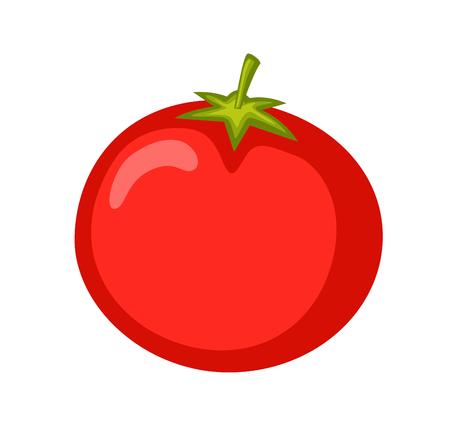 Red Tomato Vector