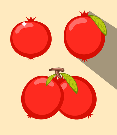 carbohydrate: Pomegranate Fruits Vector Set