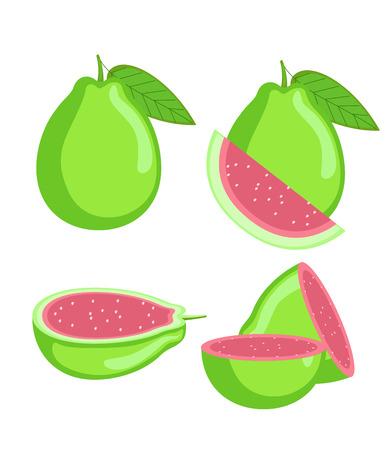 slices: Guava Slices Vector