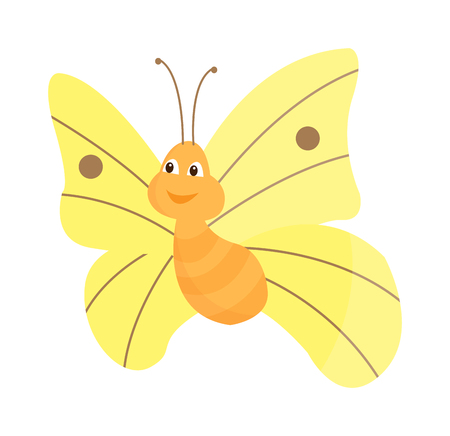 brassicae: Cute flat butterfly vector. Flat butterfly isolated on white background. Different hand made style butterfly insects vector illustration. Baby kids butterfly insects