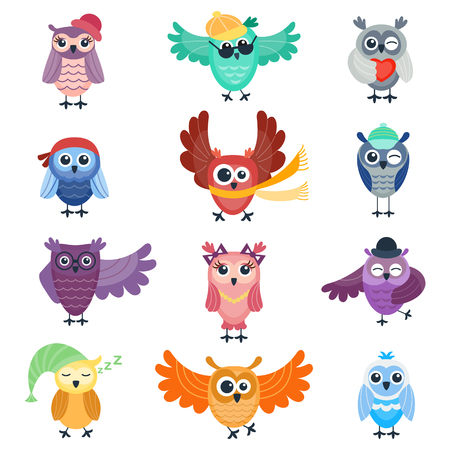 behavior: Cute vector collection of cartoon owls. Animal character cartoon owl comic funny collection. Cheerful birds behavior cartoon owl. Adorable different owl various expression birds.