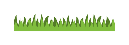 turf flowers: Green grass isolated vector. Grass earth green, nature, background and nature grass earth. Ground dirt spring garden texture concept grow agriculture.