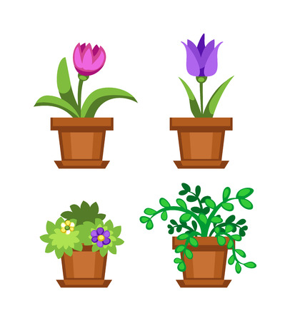 Flat flower pot and flower pot with colorful flowers. Nature home plant flower spring decoration flower pot. Flower pot garden bloom flat vector. Spring colorful garden flowers plants