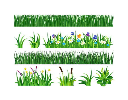 Green grass showing roots. Green grass with earth crosscut. Grass earth green, nature, background and green nature grass with earth. Ground dirt spring garden texture concept grow agriculture.
