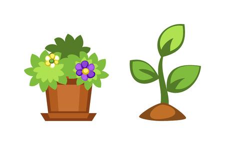Flache Blumentopf Und Blumentopf Mit Bunten Blumen. Natur Nach Hause ...