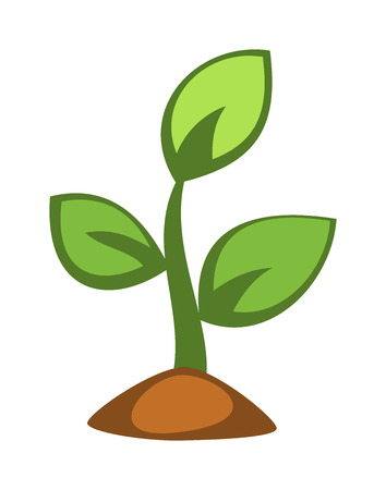 Young green plant sprout. Nature spring seedling new plant life. Grow earth sprout gardening plant seedling. Young green plant sprout growing flat vector.