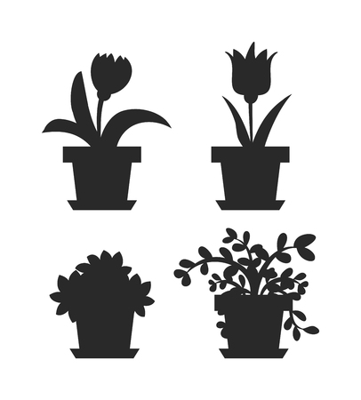 Flat flower pot and flower pot with flowers. Nature home plant flower spring decoration flower pot. Flower pot garden bloom flat vector. Spring garden flowers plants