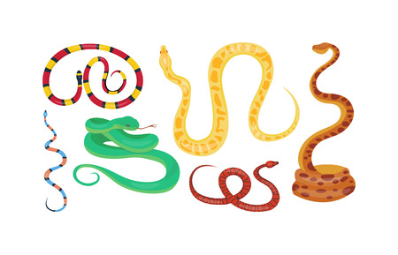 poisonous: Snake character wildlife nature viper. Flat snake python symbol, venom predator snake toxic reptile. Cartoon snake danger tongue poisonous. Common viper snake wild danger reptile vector.