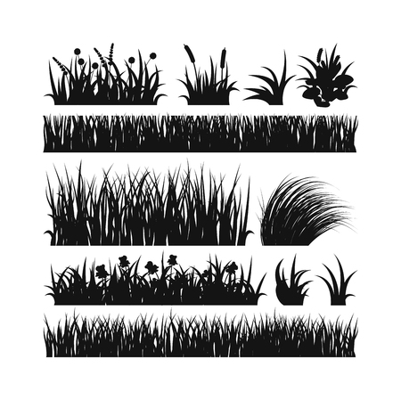 crosscut: Black grass showing roots. Black grass with earth crosscut. Grass earth, nature, background and nature grass with earth. Ground dirt spring garden texture concept grow agriculture.