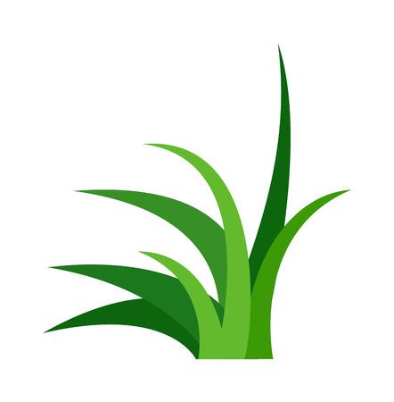 crosscut: Green grass showing roots. Green grass with earth crosscut. Grass earth green, nature, background and green nature grass with earth. Ground dirt spring garden texture concept grow agriculture.