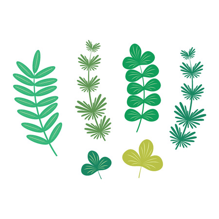 Hand drawn underwater seaweed element isolated on white background. Vector illustration branch green nature seaweed. Aquarium design seaweed sea plant green nature vector leaf decoration. Vettoriali