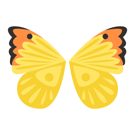 pinion: Butterfly wings isolated animal isolated pinion. Wings isolated butterfly insect freedom flight and vector wings isolated peace design flying different elements