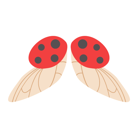 Ladybug wings isolated animal isolated pinion. Wings isolated Ladybug insect freedom flight and vector wings isolated peace design flying different elements