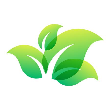 clover leaf shape: Green leaf eco design element icon. Leaf icon vector illustration friendly nature elegance symbol. Decoration flora leaf icon on white. Natural element ecology symbol green organic icon Illustration