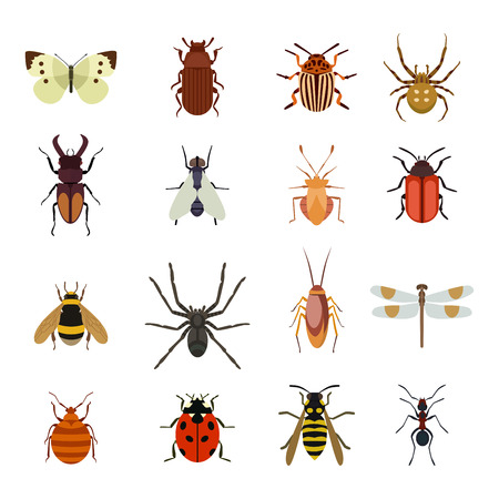 Insect icons flat set isolated on white background. Insects flat icons vector illustration. Nature flying insects isolated icons. Ladybird, butterfly, beetle vector ant. Vector insects Vettoriali