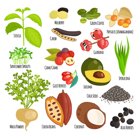 super food: Vegetarian superfood healthy and vegetable vegetarian eco food. Fresh vegetarian healthy organic. Traditional gourmet nutrition. Vegetarian super food healthy vegetable eating