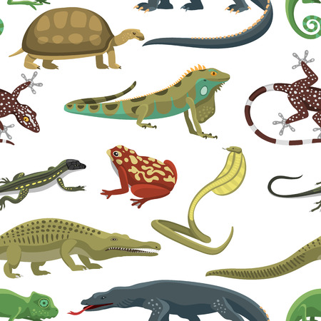 africa chameleon: Reptile and amphibian seamless pattern of white background. Colorful fauna illustration snake predator reptiles animals. Reptiles animals crocodile silhouette collection exotic cartoon set.