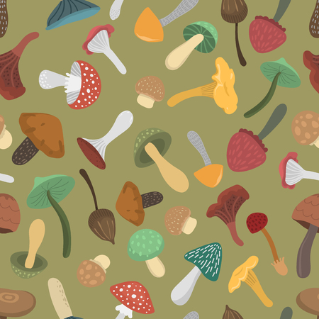 boletus: Mushrooms vector illustration seamless pattern. Different types of mushrooms isolated on white background. Nature mushrooms for cook food and poisonous mushrooms flat style