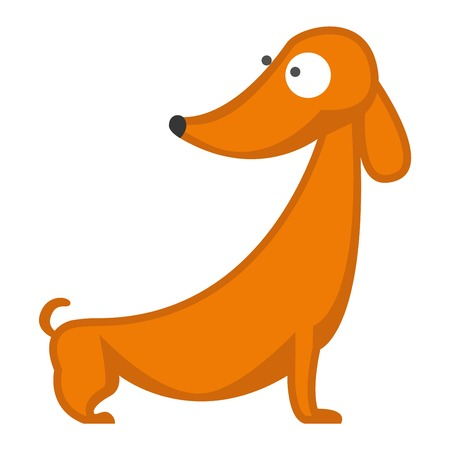 pedigree: Dachshund dog playing purebred breed, brown puppy canine vector. Cute dachshund dog and little dachshund dog. Domestic young dachshund dog adorable portrait doggy. Domestic sausage pedigree. Illustration